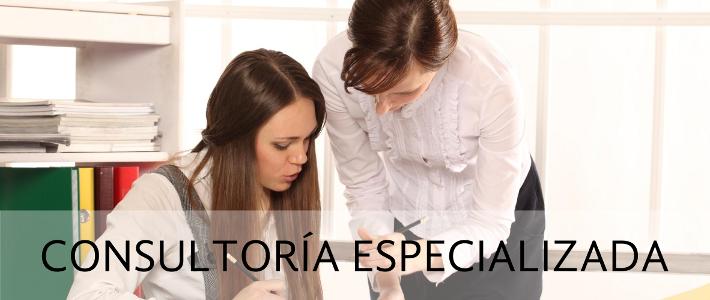 consultoria_especializada
